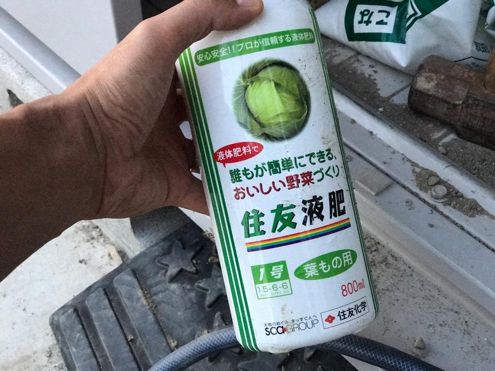 バジルやシソ(大葉)が元気のない時には、液肥(液体肥料、化学肥料)を使おう