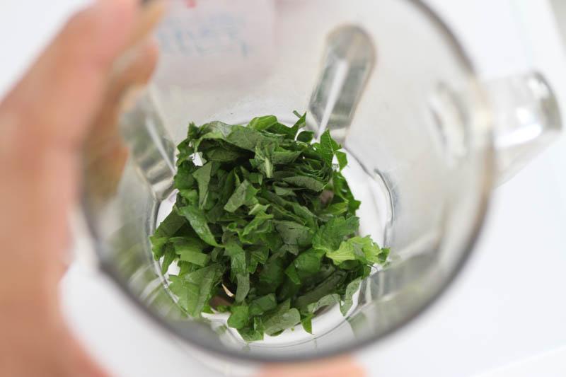 大葉のスムージー(野菜フルーツジュース)ミキサー1