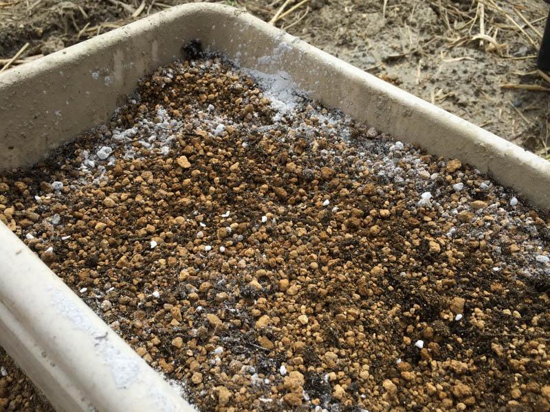 苦土石灰とバーミキュライト