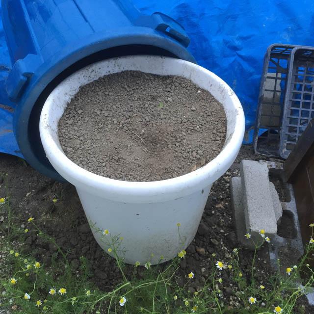 コンポストボックス用の土