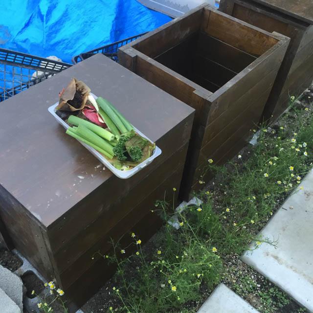 生ゴミとコンポストボックス