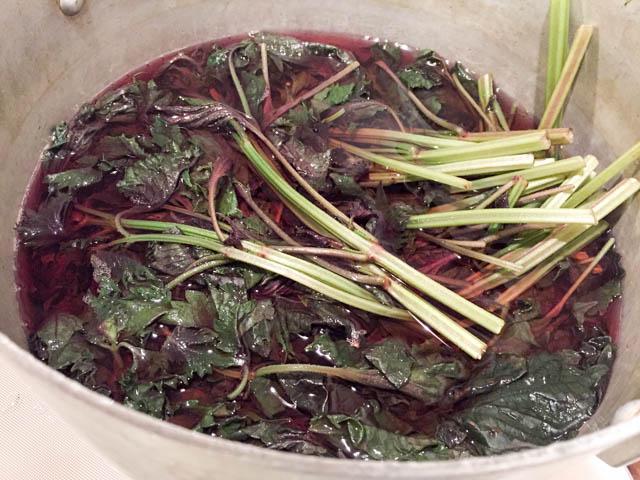赤シソを沸騰したお湯に入れます