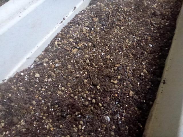 赤玉にココピート、腐葉土、バーミキュライト、苦土石灰をまぜる