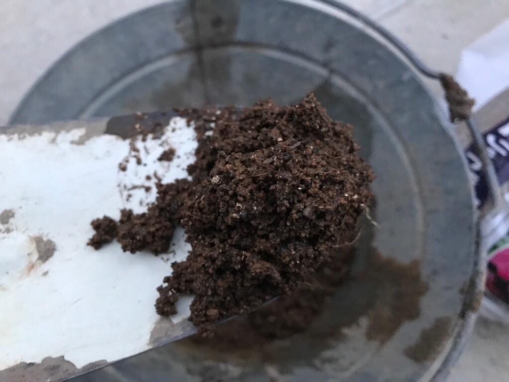 種まきの土はあらかじめ湿らせておく、しっかりと水を含ませる
