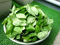 バジルソース(ジェノバソース)の料理(レシピ・作り方)